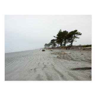 Lonely Beach, Westport Postcard