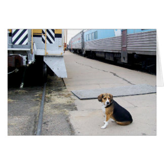 Lonely Beagle Waiting For A Train - Greeting Card