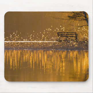 Lonely bench by the lake in golden light mousepad