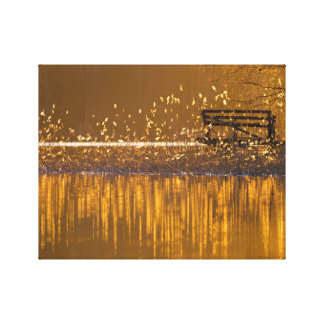 Lonely bench by the lake in the golden light canvas print