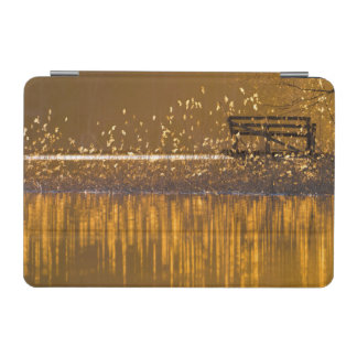 Lonely bench by the lake in the golden light iPad mini cover