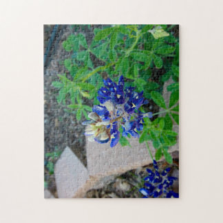 Lonely Bluebonnet Jigsaw Puzzle