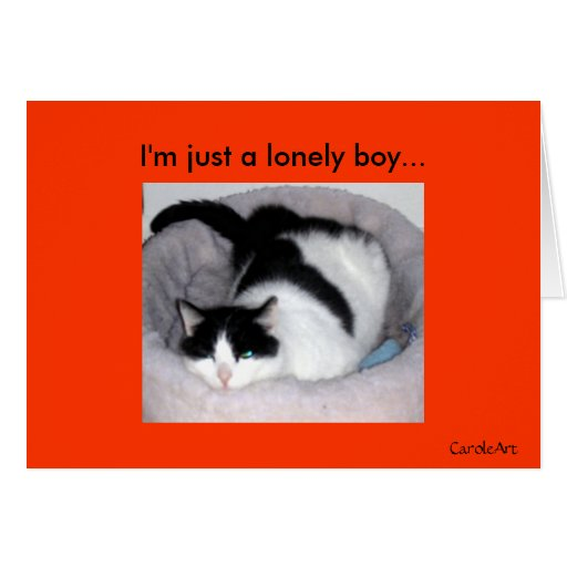 """Lonely Boy"" Cards"