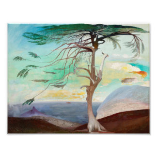 Lonely Cedar Tree Landscape Painting Art Photo