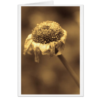 lonely chills greeting card