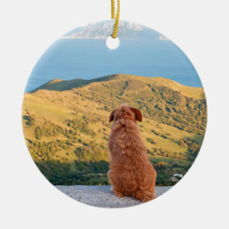 Lonely dog watching on Gibraltar strait Ceramic Ornament