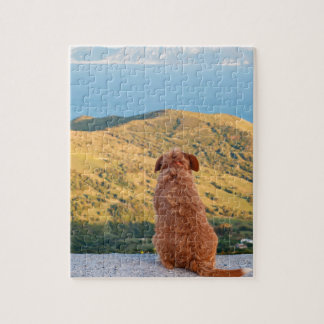 Lonely dog watching on Gibraltar strait Jigsaw Puzzle