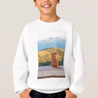 Lonely dog watching on Gibraltar strait Sweatshirt