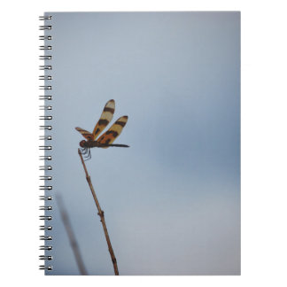 lonely dragonfly spiral notebook