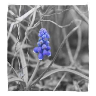 Lonely Grape Hyacinth Select Color Bandanna