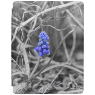 Lonely Grape Hyacinth Select Color iPad Cover