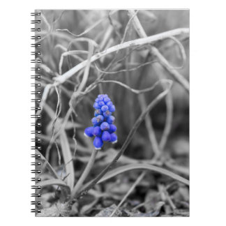 Lonely Grape Hyacinth Select Color Notebooks