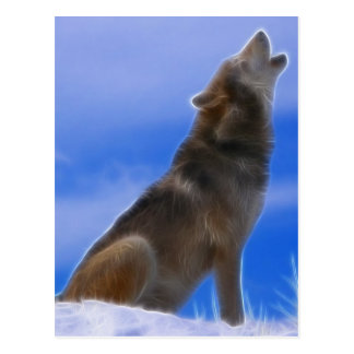 Lonely Howling Endangered Gray Wolf Postcard