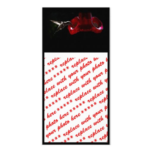 Lonely Hummingbird Personalized Photo Card