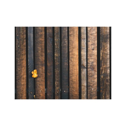 Lonely Leaf Stretched Canvas Print