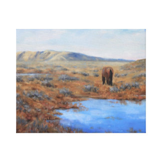 Lonely Pasture Stretched Canvas Print