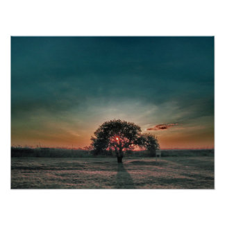 Lonely pear tree posters