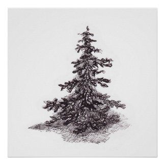 Lonely pine tree poster