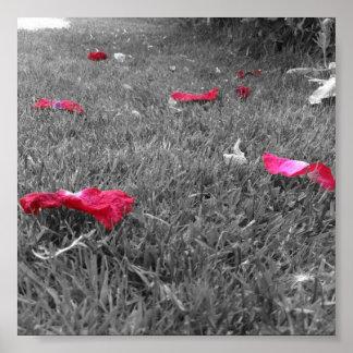 Lonely Rose Petals Print