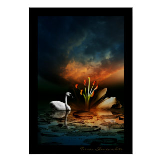Lonely Swan Print