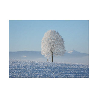 Lonely tree in snow gallery wrapped canvas