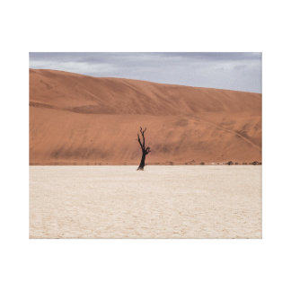 Lonely tree in the desert canvas print