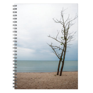 Lonely tree notebooks
