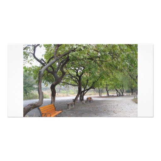 Lonely without you... personalized photo card