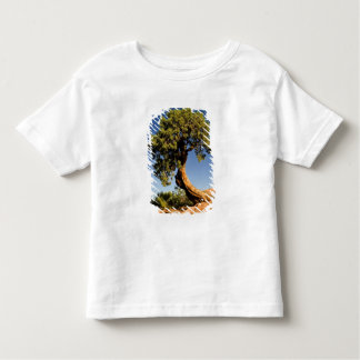 Lonesome Cedar, Deadhorse Point State Park, T Shirts