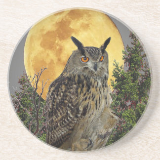 LONG EARED OWL BY MOONLIGHT COASTER