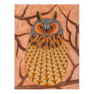 Long Eared Owl - long-eared owl Postcard