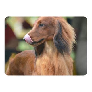 Long Haired Dachshund 13 Cm X 18 Cm Invitation Card