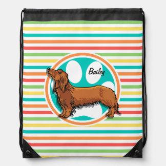 Long-haired Dachshund Bright Rainbow Stripes Cinch Bags