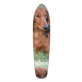 Long Haired Dachshund Skate Deck