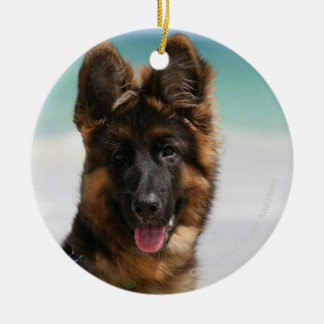 Long Haired German Shepherd Beach Ceramic Ornament