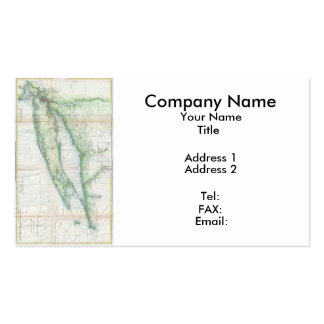 Long Island Map (1877) Pack Of Standard Business Cards