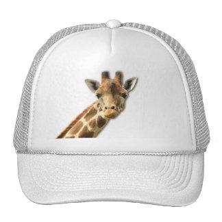 Long Necked Giraffe Baseball Hat