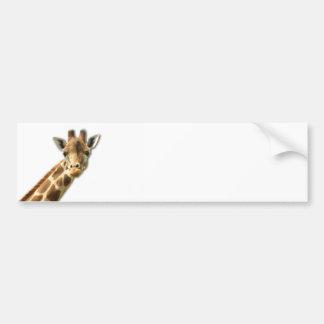 Long Necked Giraffe Bumper Sticker