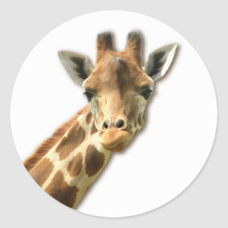 Long Necked Giraffe Sticker