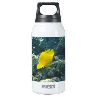 Long Nose Butterfly Fish 0.3L Insulated SIGG Thermos Water Bottle