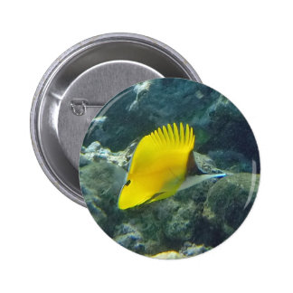 Long Nose Butterfly Fish 6 Cm Round Badge
