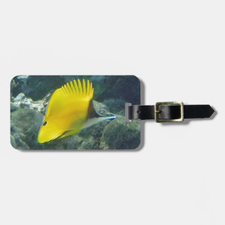 Long Nose Butterfly Fish Travel Bag Tag