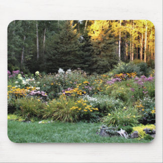 Long Shadows Late September Fall Golds Mouse Pad