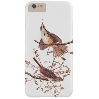 Long Sparrow Audubon Birds with Tiny Spider Barely There iPhone 6 Plus Case
