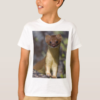 Long-tailed Weasel Tshirt