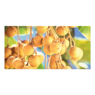 Longan fruits photo card