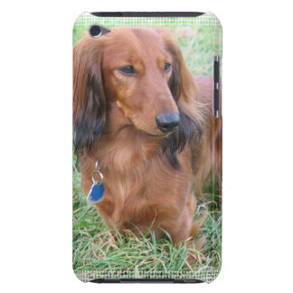 Longhaired Dachshund iTouch Case