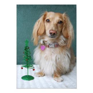 Longhaired dachshund sitting on a wicker table 13 cm x 18 cm invitation card