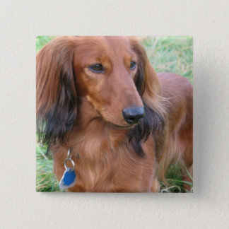 Longhaired Dachshund Square Pin