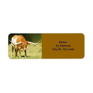 Longhorn Cattle Return Address Label. Return Address Label